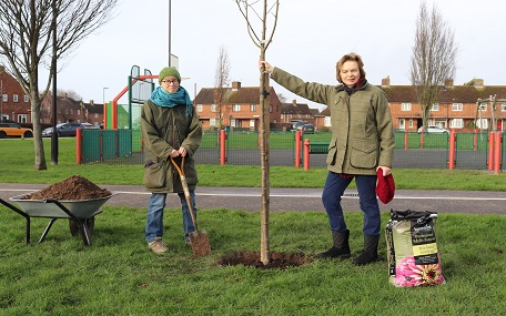 Tree sponsorship scheme